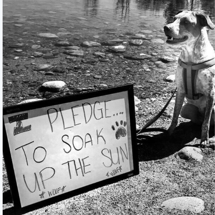 I pledget to soak up the sun